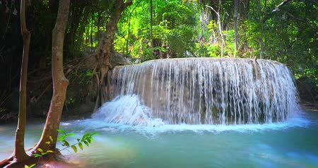 virgin forest : Majestic waterfall in tropical forest of Thailand