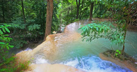 emerald green : Fresh vegetation of tropical forest. Mountain water stream flows in asian jungle Stock Footage