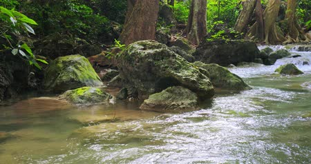 corrente : Mountain river stream flows along rocks and stones in deep forest of Thailand jungle