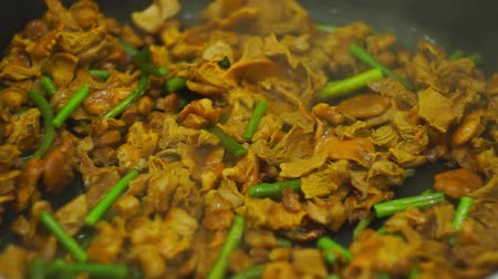 fried chanterelles Stok Video