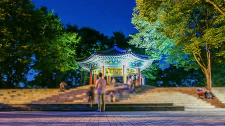 chata : Seoul City Pagoda At Night - Zooming and static time lapse of a pagoda with people at the top of Seoul Tower hill.