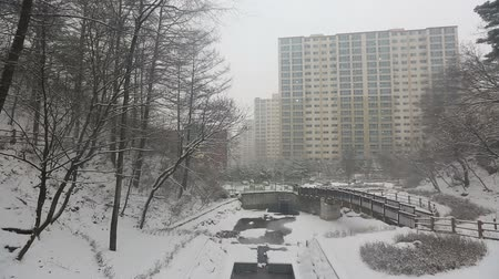 patak : Snowy Korean Mountains-Video and audio of a snowy creek during winter