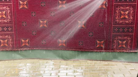 lavagem : Small rug is washed with a water jet from a hose Vídeos