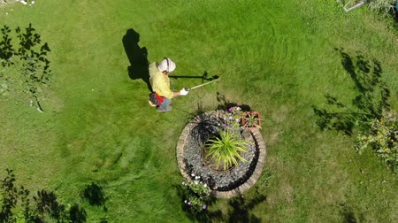 mow : From height we, see gardener mows