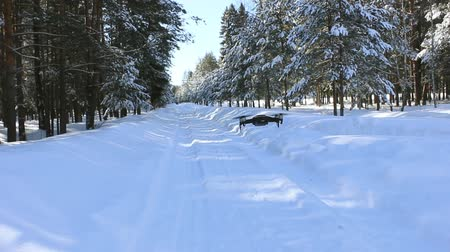 Drone take off in winter forest from the snow-covered road Stock Footage