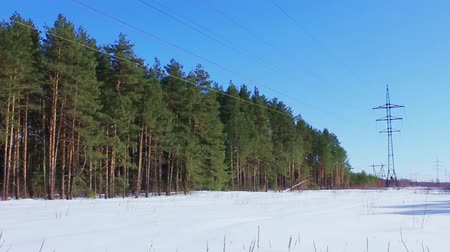 Two power lines in the winter forest. February