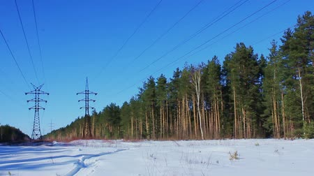 Russia. Two power lines in the winter forest. February