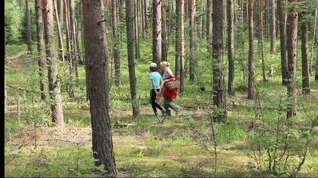 Grandmother and granddaughter went to the forest in summer to search for mushrooms