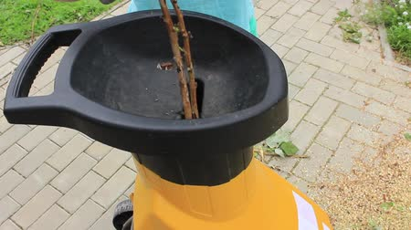 Electric garden shredder work in a sommer garden, recycles branches