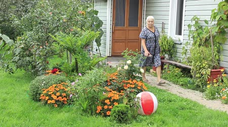 Senior woman gardening among flower beds walks and inspects them Stock Footage