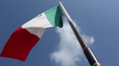 meksika : Daytime shot of the Mexican Flag blowing in the wind.  Shot taken from the bottom Stok Video