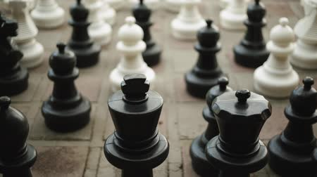rytíř : Close-up shot of black and white Chess Pieces on a street Dostupné videozáznamy