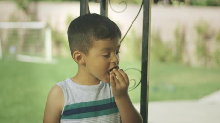 Daytime slow motion of a young boy eating an ice cream sandwich