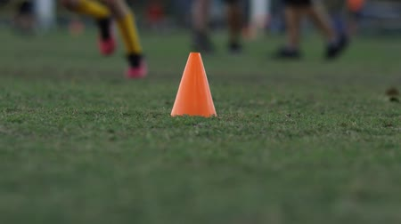 Daytime tilt up shot of a training cone at a flag football practice.