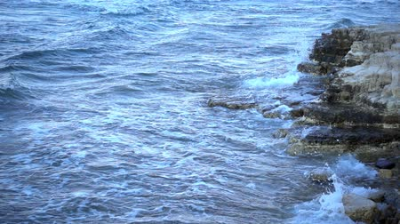 ingiliz columbia : Waves near the Seaside Stok Video