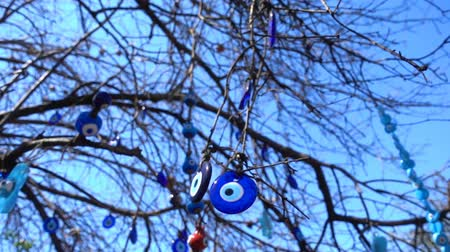 şeytan : Colorful Evil Eye Bead Amulet on Tree Stok Video