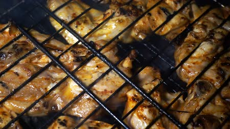 beef dishes : Chicken Food on Barbecue Stock Footage