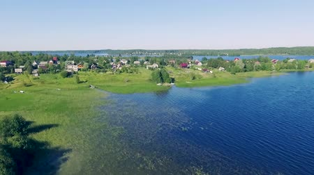 Aerial view of the blue lake with reeds and village Wideo
