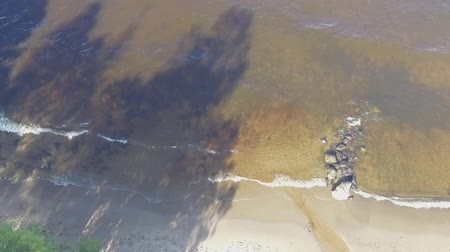 D-Log of going down aerial view of lake beach and surf Wideo