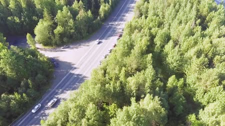 escopo : Aerial view of cars traffic on the summer forest highway