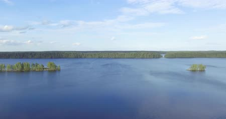 Aerial flight above smooth surface of pine forest lake