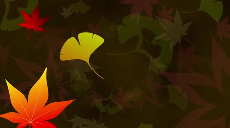 fallen leaves : Maple Ginkgo leaves loop dark background Stock Footage