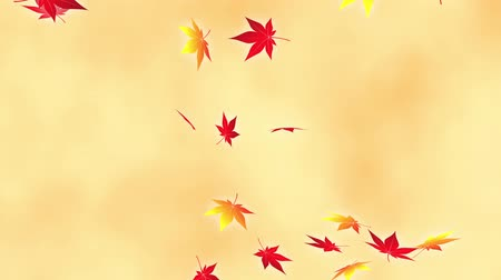 fallen leaves : Loop vertical fast maple bright background