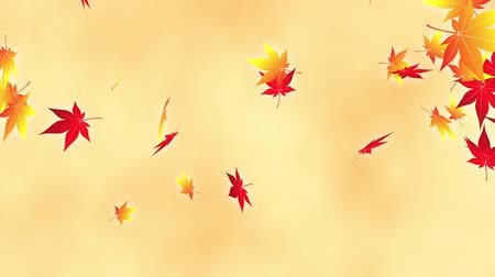 fallen leaves : Loop Horizontal late rotation maple bright background Stock Footage