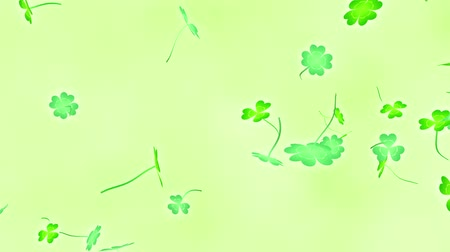 Loop Horizontal late Clover leaves bright background Stock Footage
