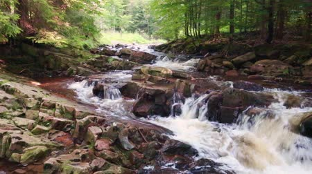 wisla : Mountain stream full of clean water