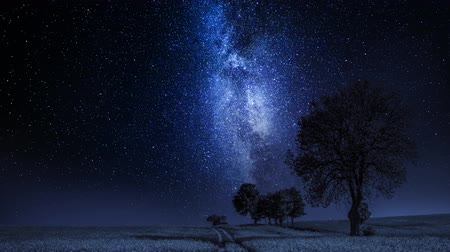 constelação : Moving milky way and field with trees at night, timelapse, 4K