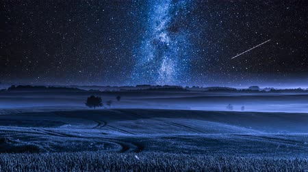 yolları : Stunning milky way over field in summer, timelapse, 4K