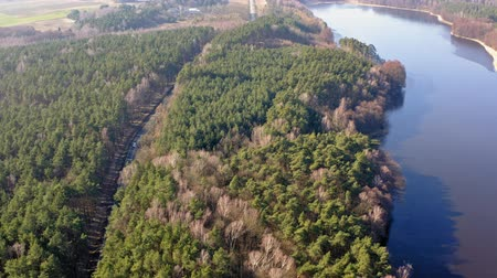 зеленый фон : Aerial view from above of forest road and one lake Стоковые видеозаписи