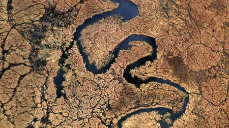 wasteland : Small river and brown swamps, aerial view