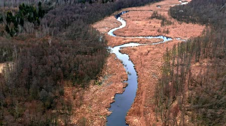 wasteland : River and brown swamps, aerial view, Poland