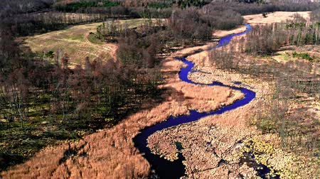 wasteland : Aerial view of winding river, Poland