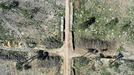 wervelwind : Deforestation as environmental destruction, aerial view