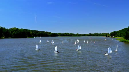 yat yarışı : Aerial view of regatta of small boats on the lake in summer, Poland Stok Video