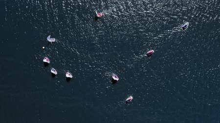 регата : Small boats regatta on the lake in summer, aerial view Стоковые видеозаписи