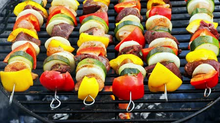 fogueira : Homemade and spicy skewers on grill with meat and vegetables in summer