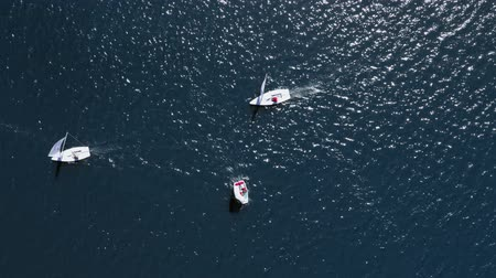 レガッタ : Top view of regatta of small boats on the lake in summer, Poland, aerial view