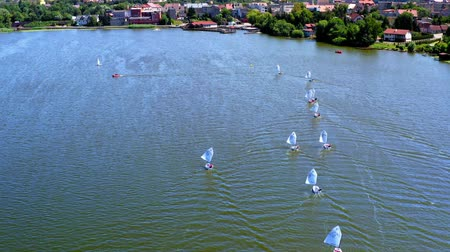レガッタ : Regatta of white boats on the lake, view from above
