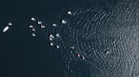 yat yarışı : Top view of regatta of boats on the blue lake Stok Video