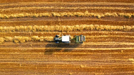 segregatory : Top view of machines for collecting and pressing hay Wideo