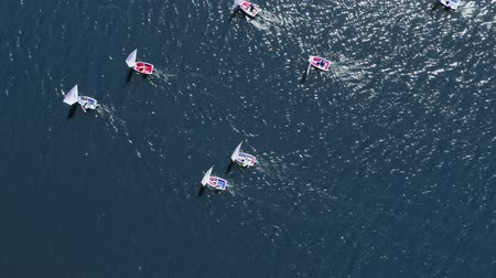 yat yarışı : Aerial view of sailing boats on lake during the competition Stok Video
