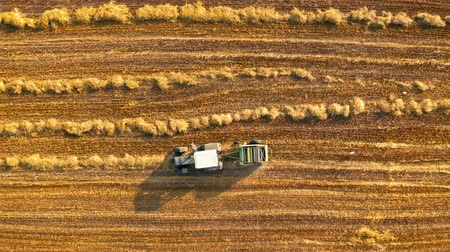 segregatory : Top view of tractor with round baler on fields Wideo