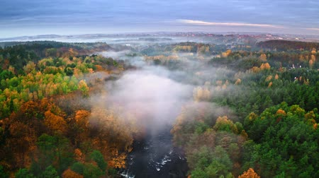 camping : Foggy sunrise at river and forest in autumn, aerial view