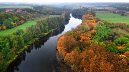 autumn leaves : Aerial view of river at autumn in Poland