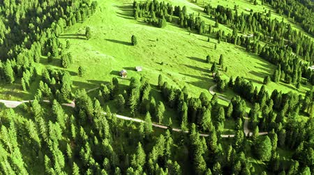 dolomite : Stunning area view of green hills in Dolomites Stock Footage