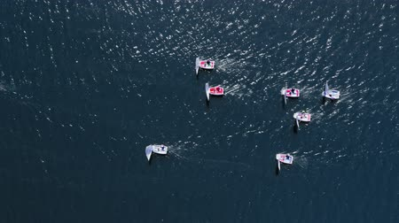 wyscigi : Top view of sailing boats on lake during the competition Wideo